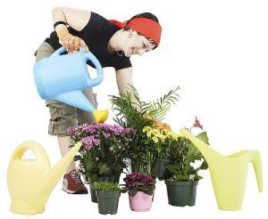 Cómo saber si una planta necesita agua 2