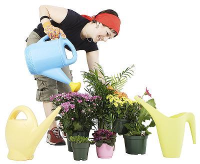 Cómo saber si una planta necesita agua