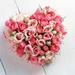 Wallpapers de rosas 6