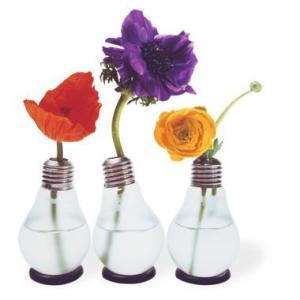 Floreros bombillas