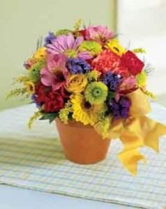 Formas de secar flores 1