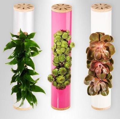 Flowerbox, decoración de plantas en tus paredes