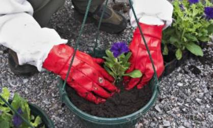 Mantener los guantes de jardinería limpios
