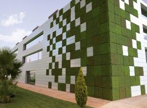 Pros y contras de las paredes verdes 2
