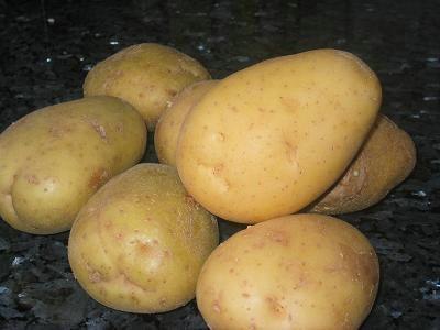 Cómo plantar patatas