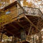Casas en los árboles 5