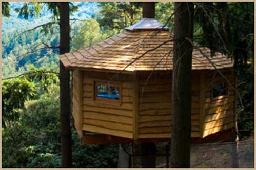 Casas en los rboles - Casas en los arboles girona ...