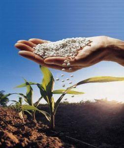 Cómo usar fertilizante
