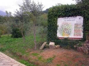 Jardín botánico El Castillejo, Cádiz