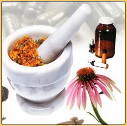Las Plantas medicinales: Generalidades