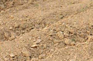 Tipos de suelo para plantas 4