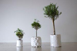 Macetero GROWTH