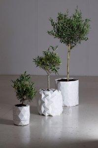 Growth, el macetero que crece a la vez que nuestras plantas 2