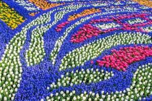 Los jardines de Keukenhof (Holanda) 4
