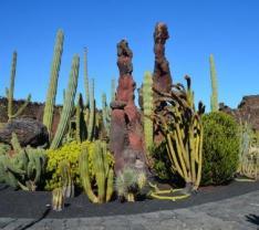 Lanzarote-Jardín-de-Cactus