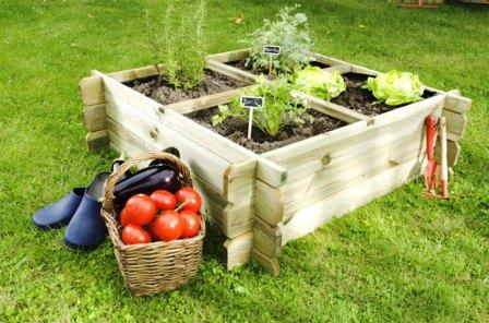 Huertos urbanos: espacios de cultivo