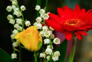 conservar las flores frescas