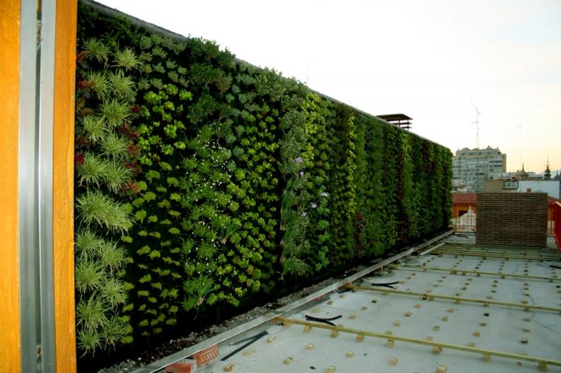 Artculos con la etiqueta como hacer un jardin vertical Pgina 1