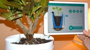 Parrot Pot, la maceta inteligente