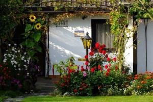 consejos-para-comenzar-en-un-jardin