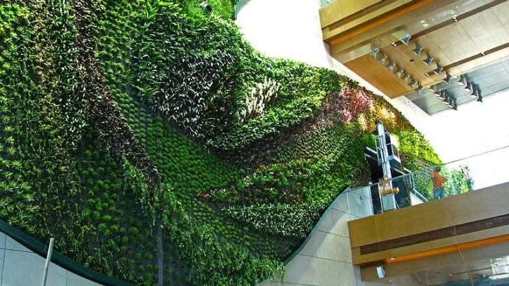 3 jardines verticales increíbles