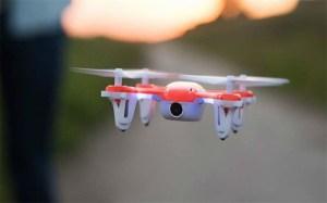 dron-para-polinizacion