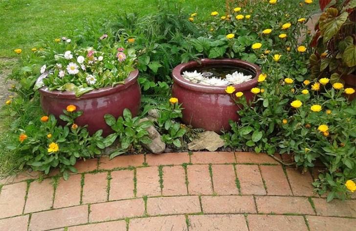 macetas-de-plantas