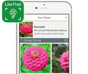identificar plantas con una App