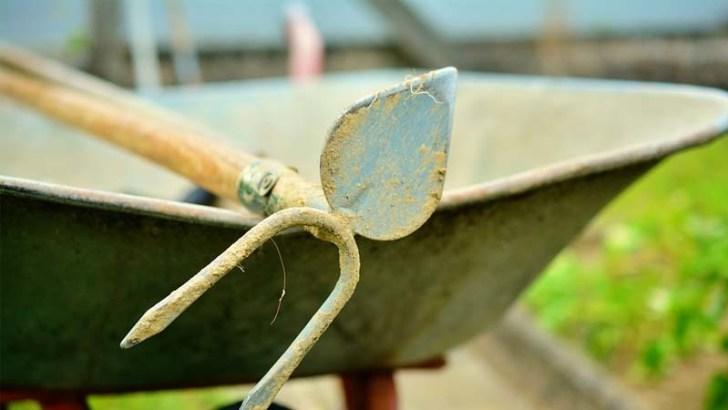 Por qué enterrar aspirinas en el jardín
