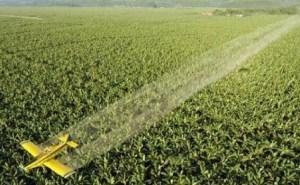 pesticidas-dañinos-según-la-ONU-1