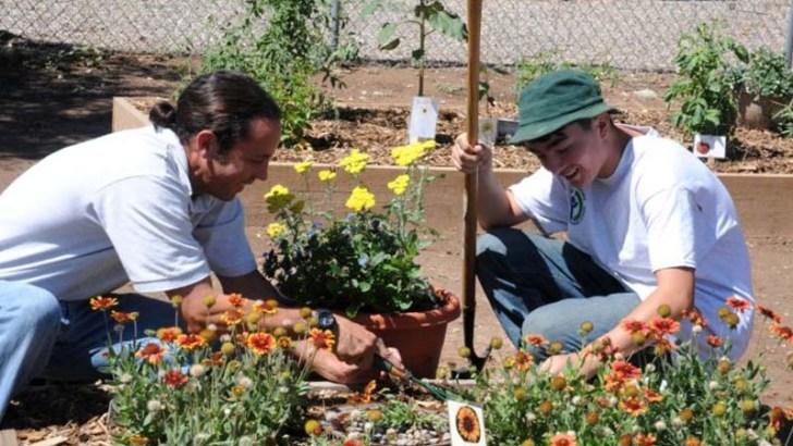 Herramientas básicas para trabajar en el jardín