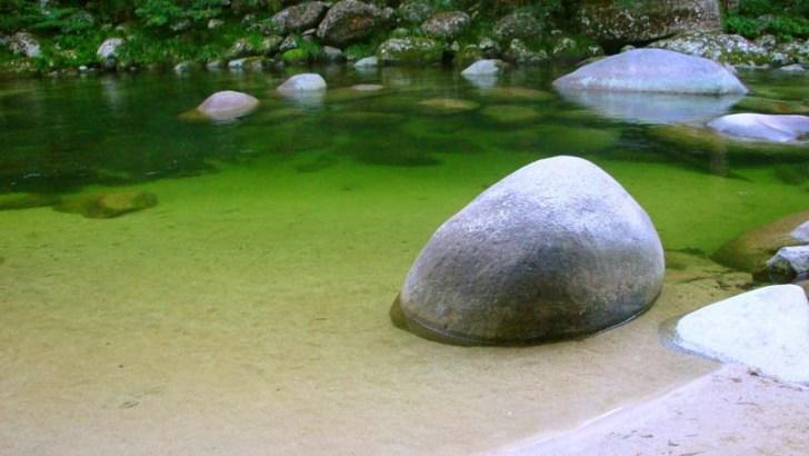 ¿Qué es un jardín zen?