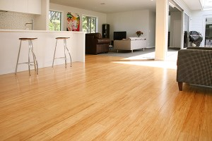 compressed bamboo flooring - natural