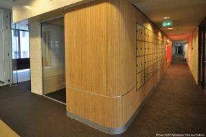 bamboo joinery on walls - flexbamboo