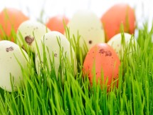 Happy Easter 2019 Celebrate With Events In Myrtle