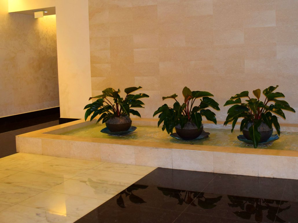 office indoor plants. Office-plants-for-commercial-businesses-04 Office Indoor Plants