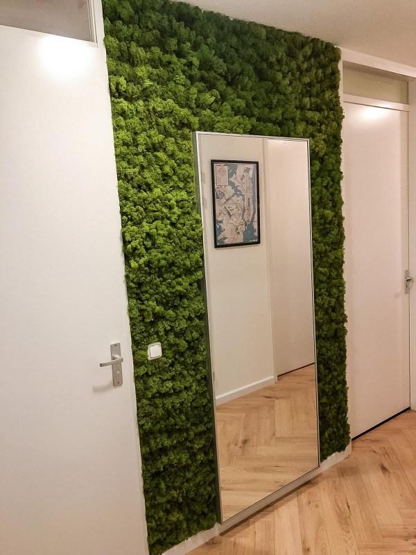 muur gang na moswand maken