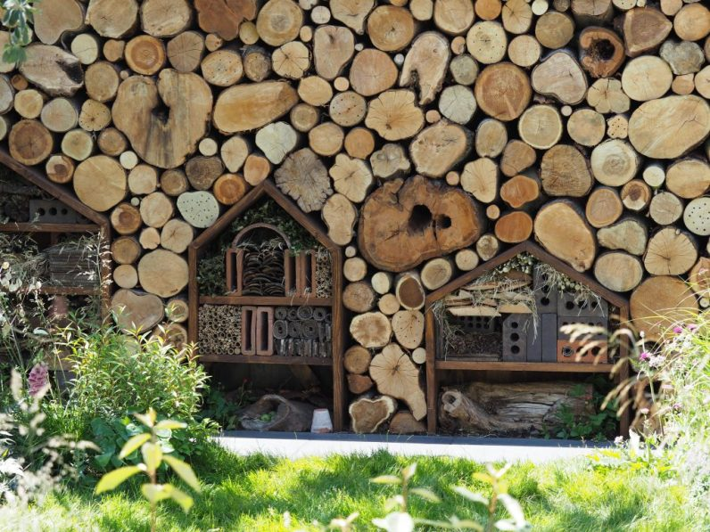 Logs abound, along with insect hotels in Lilly Gomm's Family Garden at the RHS Hampton Court Flower Show 2018