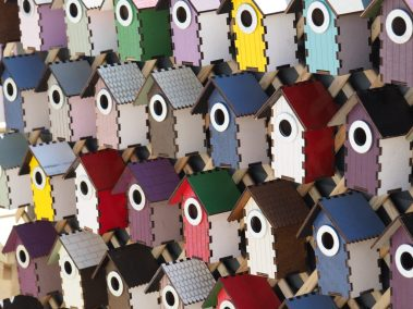 We loved these bird boxes!