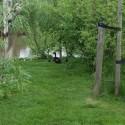 Groendoorkijkje
