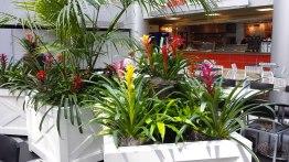 food court plant maintenance