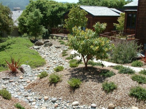 berms and dry creekbed designed