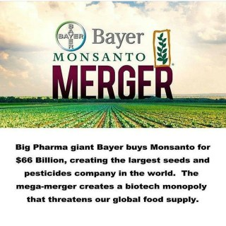 Bayer and Monsanto Merger Is A Marriage Made In Hell
