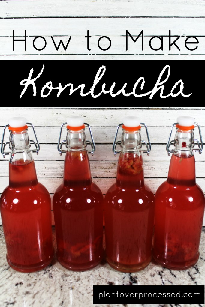How to Make Kombucha | Plant Over Processed