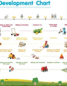 Child development chart also timiznceptzmusic rh