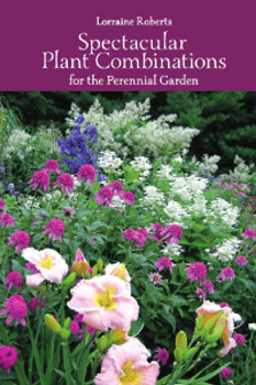 Spectacular Plant Combinations for the Perennial Garden