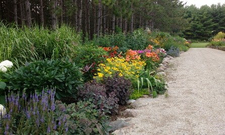 Plant Combinations at plant Paradise Country Gardens
