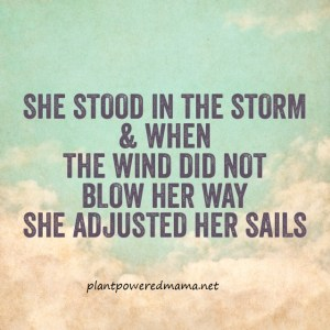 Adjust Your Sails-Plant Powered Mama