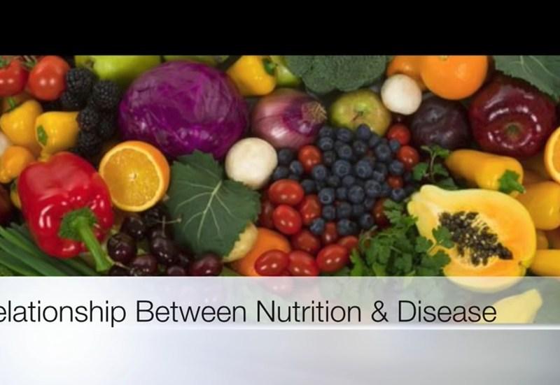 Relationship Between Nutrition & Disease