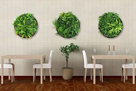 Artificial Green Wall Discs series
